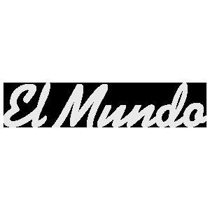 Referenz: ElMundo mit Logo